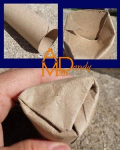 Paper roll seed starter